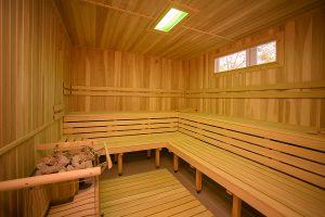 Hotel Behounek Sauna