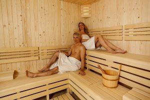 SPA Hotel Smetana Vysehrad Sauna