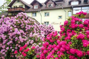 Kurhotel Kwisa 2 Gebäude mit Blumen