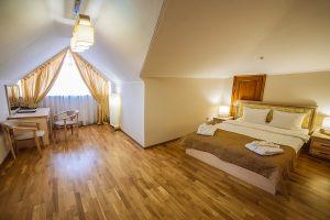Resort- und Hotelkomplex Svityaz Standard Doppelzimmer